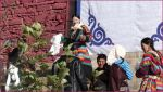 tibet_2019_09_0022